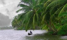 Kavvayi is a small island, near Payyannur in the Kannur district of Kerala state in India.The island is connected to Payyannur by a small bridge on the Kavvayi River South India Tourism, Kerala Tourism, Kerala Backwaters, Kerala Travel, Free Stock, Arabian Sea, Kerala India, Tourist Places, Kochi