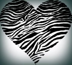 L♥vE any & everything Zebra ;)!!~♥~