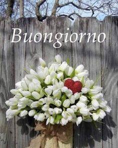 Valentine Wreath, Wreath Alternative White Tulip by forevermore Valentine Day Wreaths, Valentines Day Decorations, Valentine Day Crafts, Love Valentines, Valentine Bouquet, Wreath Crafts, Diy Wreath, Tulip Wreath, Floral Wreath