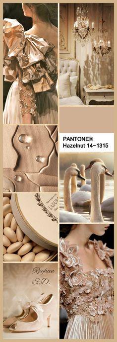 '' Hazelnut - 2017 Pantone '' by Reyhan S.D.