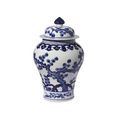 Williams-Sonoma Blue & White Swallow Tail Ginger Jar ($245) ❤ liked on Polyvore featuring home, home decor, blue white porcelain ginger jar, blue and white ginger jar, blue and white porcelain jars, blue and white jars and blue white ginger jar