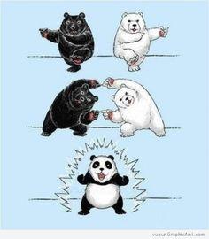 La fusion du célèbre manga Dragon Ball, ici un ours blanc et un noir fusionnent pour donner un panda !
