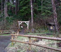 Seaside Oregon Photo Gallery: Seaside Trailhead for the Tillamook Head Hiking Trail