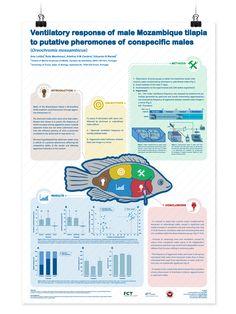 DepliantPosterIntJpg   Scientific Posters