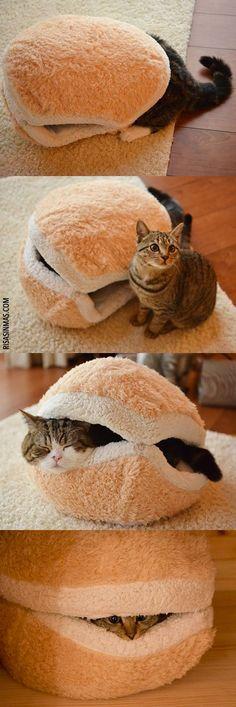 Si te gustan los gatos, morirás de la ternura con esta cama-hamburguesa para gatos *_* ¡La queremos!
