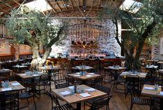 Image result for la jolla herringbone restaurant