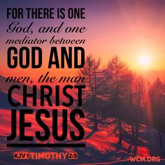 Remarkable, how to become an ordained christian minister something is