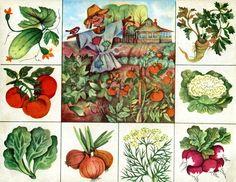 7 Preschool Education, Preschool Worksheets, Kindergarten Activities, Activities For Kids, Teaching Plants, Teaching Vocabulary, Kids Learning, Teaching Kids, Hidden Pictures