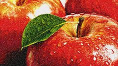 Apples photo stitch free embroidery design - Photo stitch embroidery designs - Machine embroidery community