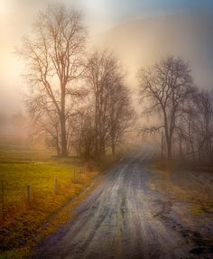 The Rural Road (NY state) by Paul Jolicoeur