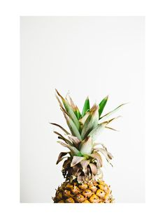 Pining for Pineapple by Joni Tyrell (Minted Artists from the Midwest)