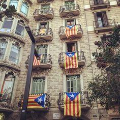 Catalan flags @ Passeig De Sant Joan - Barcelona
