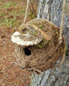 Rustic Outdoor Birdhouse with Mushroom by bearpawrustics in Maine