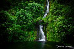 Centennial garden waterfall in Napier