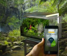 Terrarium, aquarium, or herb garden. Grow flowers in the winter, or make a rainforest for your frogs. Read no complex manuals and acquire 0 new skills to learn how to do it. The Biopod is smart enough for the both of you. At least when it comes to gr