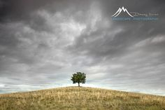This is an image that I have been searching for, for quite some time. I have been looking for this lone tree sitting on top of a grassy hill in the middle of nowhere with stormy skies above it. It's not like I was expecting too much. Never the less on a road trip earlier this year while driving through the New England countryside, I found my tree.