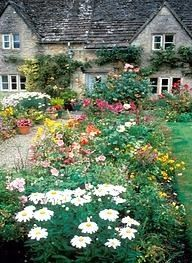 Cotswold cottage : ) A riot of flowers!