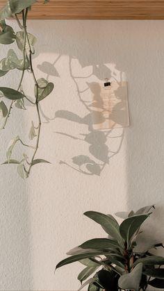 Look Wallpaper, Plant Wallpaper, Aesthetic Pastel Wallpaper, Scenery Wallpaper, Aesthetic Backgrounds, Wallpaper Backgrounds, Aesthetic Wallpapers, Flower Aesthetic, Aesthetic Art
