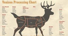How to Be Your Own Butcher [INFOGRAPHIC]