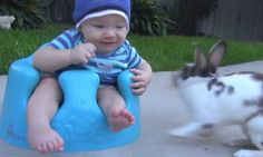 Funny Gif Of The Day: Yoinks! Gif Of The Day, Octopus, Animal Rescue, Socks, Kids Rugs, Funny, Life, Animals, Animales