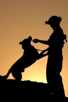 War Dog and Handler share a peaceful moment together