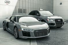 Audi Tampa Nardo R8