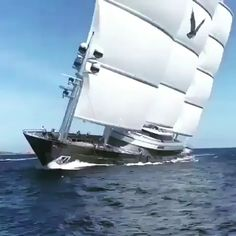a pleasure sailing on this massive Million S/Y Maltese Falcon SuperYacht. Yacht Design, Boat Design, Boat Wallpaper, Luxury Sailing Yachts, Cool Boats, Yacht Boat, Motor Yacht, Speed Boats, Jet Ski