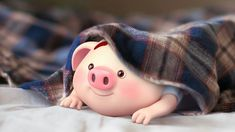 Pig Wallpaper, Funny Phone Wallpaper, Baby Pigs, Pet Pigs, This Little Piggy, Little Pigs, Cute Images, Cute Pictures, Kawaii Pig