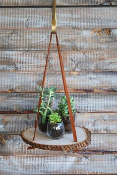 24 Cool DIY Hanging Planters For Indoors And Outdoors - Gardenoholic Diy Projects To Try, Wood Projects, Woodworking Projects, Woodworking Classes, Woodworking Chisels, Woodworking Basics, Woodworking Machinery, Woodworking Furniture, Teds Woodworking