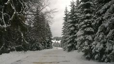 Wintery scenery on the way to Ialomita Cave Romania, Cave, Travel Destinations, Scenery, Outdoor, Beautiful, Road Trip Destinations, Outdoors, Landscape