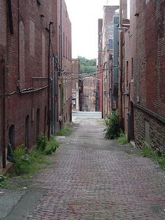 cobblestone streets, Jamestown, NY - where my dad's side of the family lived from the 1700s on