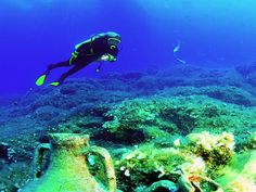 Explore The Beautiful Coral Reefs And Wonders Of Marine Life With 2 Hours Of Beach #Scuba Diving At Deep Blue Sea Diving From AED 145 At #Cobone
