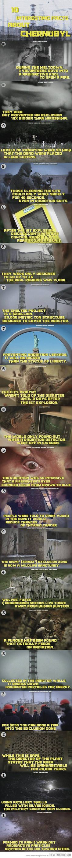 10 interesting facts about chernobyl on http://seriouslyforreal.com/seriously-for-real/10-interesting-facts-about-chernobyl/