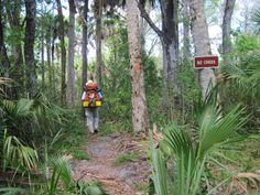 Ocean To Lake, Florida Trail Tracts 60 miles.