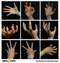 elphabaforpresidentofgallifrey:  forzamentis:  Fantastic hands references by the website Hong14cafe. Hong14cafe: Facebook   Forum   ok for a hot second i thought the second hand looked like jar jar binks