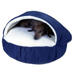 $91.73-$109.95 Snoozer Cozy Cave, Navy, X-Large - Cave style nesting pet bed for breeds that like to burrow. http://www.amazon.com/dp/B001F5Y9DS/?tag=pin2pet-20