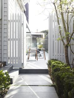 White picket fencing...nice and tall. I like the height for a backyard