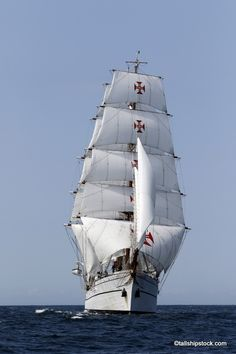 Sagres Tall Ships America Race NJ
