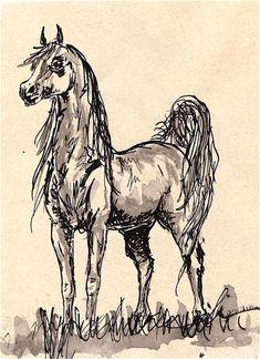 Arabian horse. by knyttets  http://knyttets.deviantart.com/art/Arabian-horse-158077170