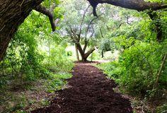 The 11 Best Hiking Spots in Louisiana
