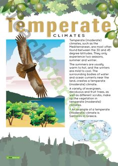 Teaching Resource: A poster to display in the classroom when learning about temperate (moderate) climates.