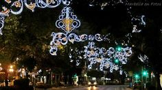 Marbella, Spain. Christmas/Navidad.