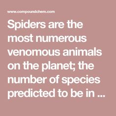 Spiders are the most numerous venomous animals on the planet; the number of species predicted to be in existence, 150,000, is thought to be greater than the numbers of all other venomous creatures …