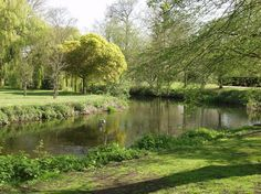 River Colne, Lower Castle Park, Colchester, Essex, England