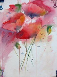 soft print - poppies - water colorحتى الارض تعرض دماء الشهداء على زهور الاقحوان البرية