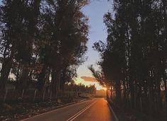 "Felipe Andrés Ibáñez Lagos on Instagram: ""🌳🌄"" Ibanez, Country Roads, Instagram, Places"