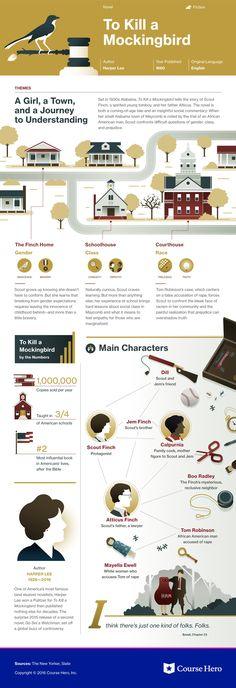 To Kill a Mockingbird infographic