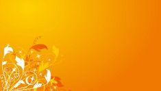 Orange Flowers, Yellow, Design Ideas, Google Search, Orange Blossom