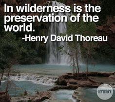 #thoreau #naturequotes