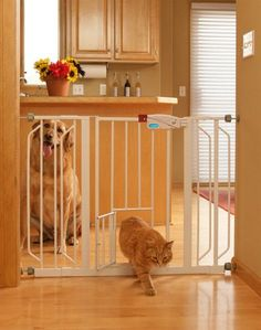 Carlson 0930PW Extra-Wide Walk-Thru Gate with Pet Door, White - I bet Ryan could build something like this...